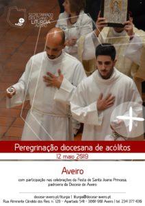 Peregrinação diocesana de Acólitos @ Seminário de Aveiro