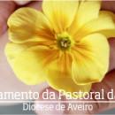 FORMAÇÃO PARA AGENTES DE PASTORAL DA SAÚDE