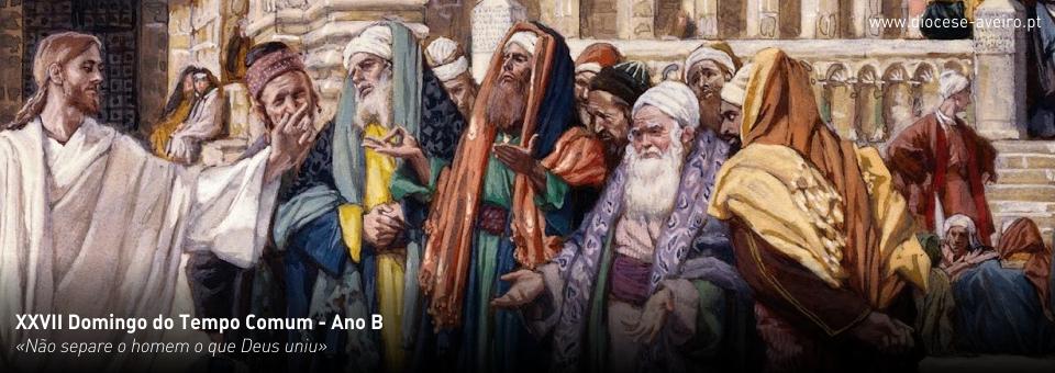 XXVII Domingo do Tempo Comum – Ano B
